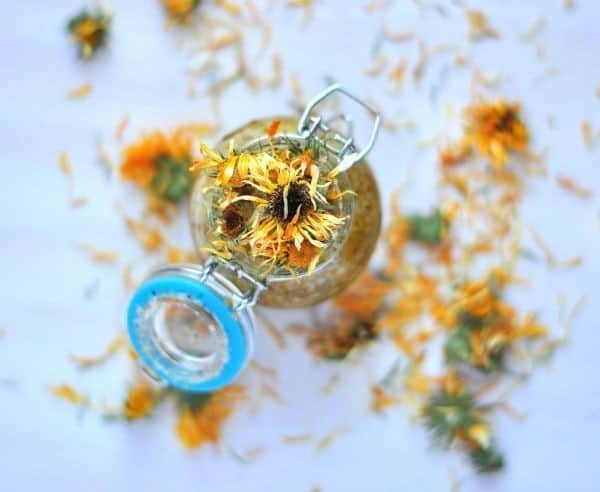 Coconut and Calendula Sugar Scrub
