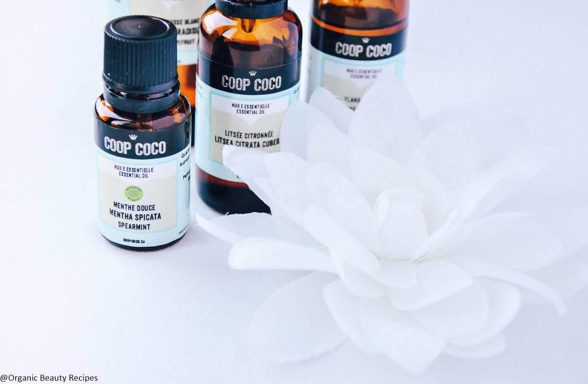 Natural preservatives essential oils ...